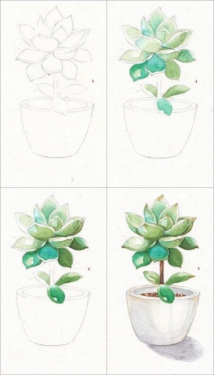 Pflanze in Blumentopf zeichnen lernen, Anleitung in vier Schritten, zeichnen lernen Schritt für Schritt