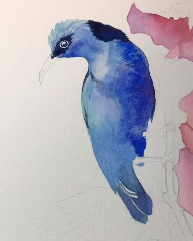 Watercolor Painting Tutorial Animal
