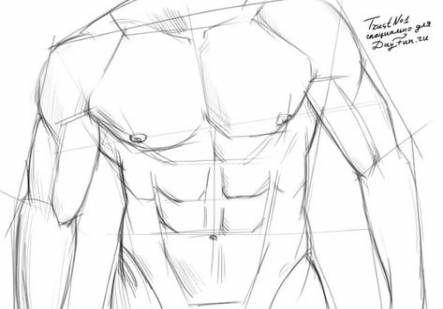 Descubra ideias sobre desenho de corpo masculino