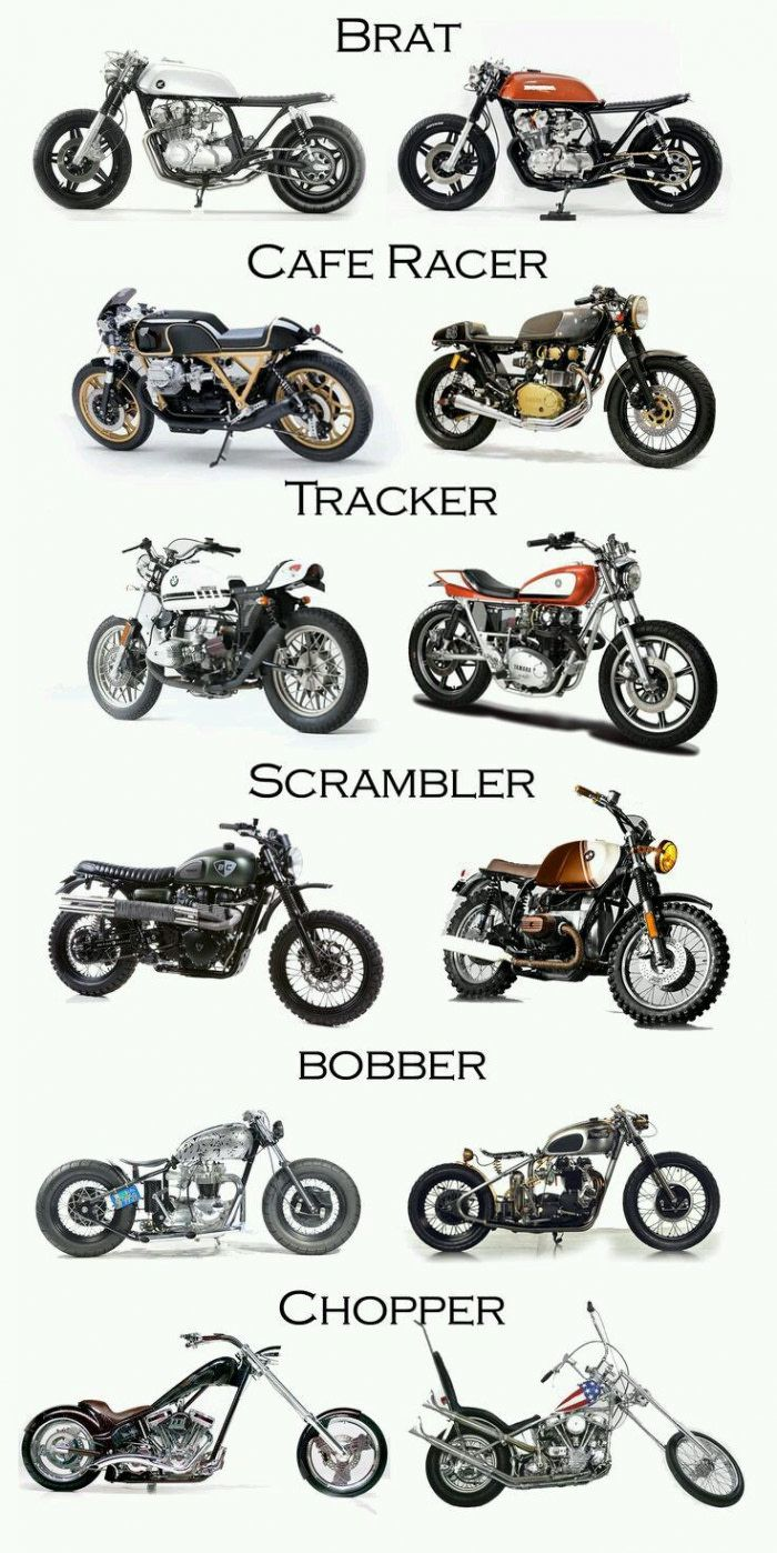 What is your favorite model - 9GAG