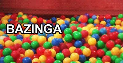 """""""Bazinga"""" has officially been dubbed a species of bee as a way to honor Sheldon Cooper   10 Fun Facts About The Big BangTheory"""