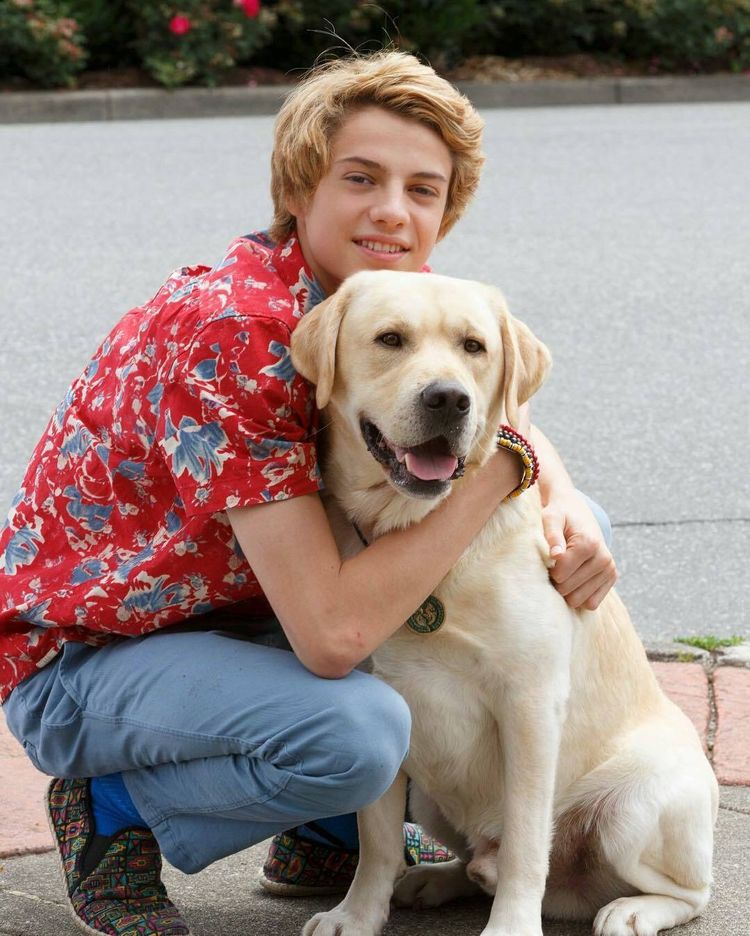 What Nick Star Has A Dog Named Henry : named, henry, Danger, Ideas, Henry, Norman,, Nickelodeon,, Jason, Norman
