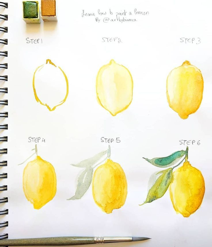Bianca Rosen Art 🌸 в Instagram: «🍋 TUTORIAL! 🍋 Ever wondered how to paint a lemon? 😊 If you try this technique tag #biancasartchallenge so I can see!! 💕 . Materiel used 🎨:…»