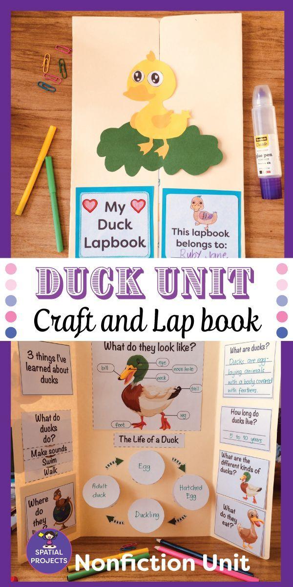 check out this duck nonfiction unit it includes a nonfict