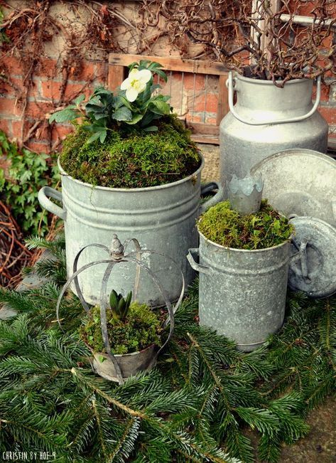 décoration de jardin - objets du jardin