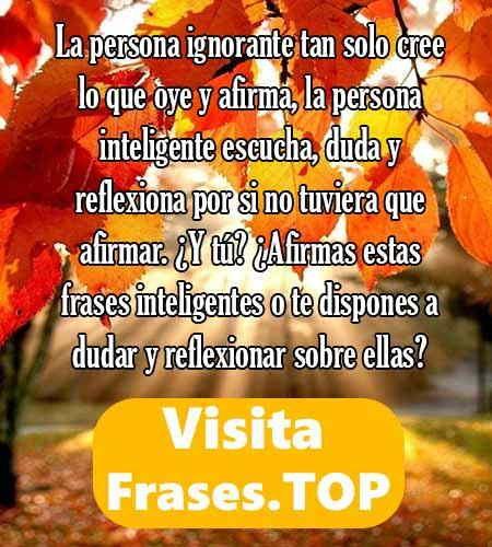 Frases De Amor Y Imagenes De Amor Para Whatsapp Frases