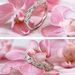 This exquisite band is inspired by nature.🌸🍃#showyourcoast⠀ Style No. WC7145 Want to know how much a piece costs? One of our authorized dealers can provide you with pricing. To find an authorized dealer near you, visit the authorized dealer section of our website. - - - - - - #ring #weddingband #bands #stackable #stackablebands #2021love #ringinspo #bling #ringideas #wedding #ringdesigner #whitegold #platinum #platinumjewelry #whitegoldrband #mesmerizeher #coastdiamond #platinumband
