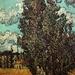 Vincent van Gogh.. LOVE