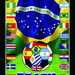 brasilcopamundo