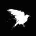 RavenCrest Tactical | Tactical OTF Knives