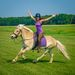 Discover The Horse | Equine Education + Adventure Series