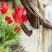 Elizabeth Akinyi - Photography, Travel, Style, Eating Healthy