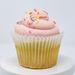 Keto Cakes