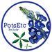 PotsEtc By Judy