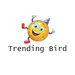 Trending Bird