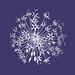 Fiona Calder Designs - Floral Artist