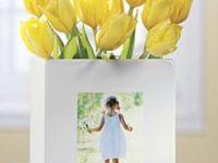 1000+ images ab... Exposures Frames Catalog