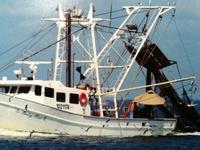 My love of Shrimp Boats