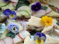 Sweet and Savoury recipes. Foods containing, decorated or garnished with edible flowers .... Rose, violets, lavender, orange blossom, elderflower, hibiscus, pansy, marigolds ....PLEASE  visit my other boards DRINKS A Floral Palate, Herbs & Wild Foods