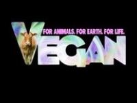 Anything you can make.....I can make vegan!