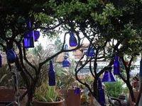 Bottle Trees!
