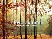Fall Favourites