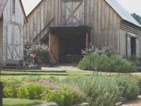 CH Farm / #farm #homestead #garden