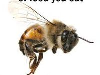 Beekeeping