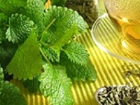 Herbs, Remedies & Medical Info