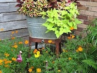 outside decor & gardening