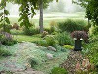 Gardening & Landscaping Ideas