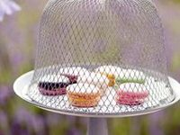 Cake toppers, cake stands and cloches