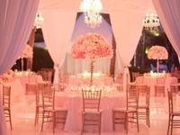 Pink, Blush, & Fuschia Weddings