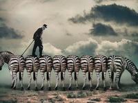 Inspiration: Photography