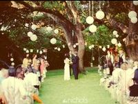 Dream Day ~ Decorations