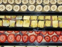 Foods-Dehydrating Foods
