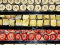 Foods-Dehydrating Foods