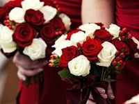 November wedding / Ideas for our special day November 22 2014 Married my high school best friend...our colors turned out beautiful.