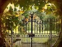 Doors / gates & fences