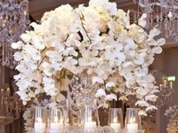 Wondering what to put at the center of it all?  I've showcased a few va-va-voom centerpieces that make a dramatic statement. But a large number of striking table centerpieces are simple and elegant.  You've got quite a few to look at.  Take your time and take in all the beauty these centerpieces have to offer.