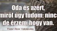 Vavyan-Fodorákos
