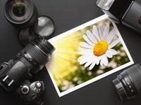 Professional & Beginner....Photoshop & Lightroom..Any and all things Photography