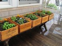 Gardening. :)