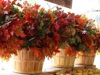 Autumn and harvest