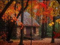 Autumn - Inspirations