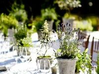 Ideas for table settings and centrepieces