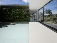 Patio-courtyard-front/backyard