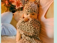 Leopard Nursery Inspiration