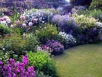Flowers, gardens...