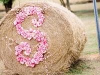Bridesmaids, decor, and flowers, etc